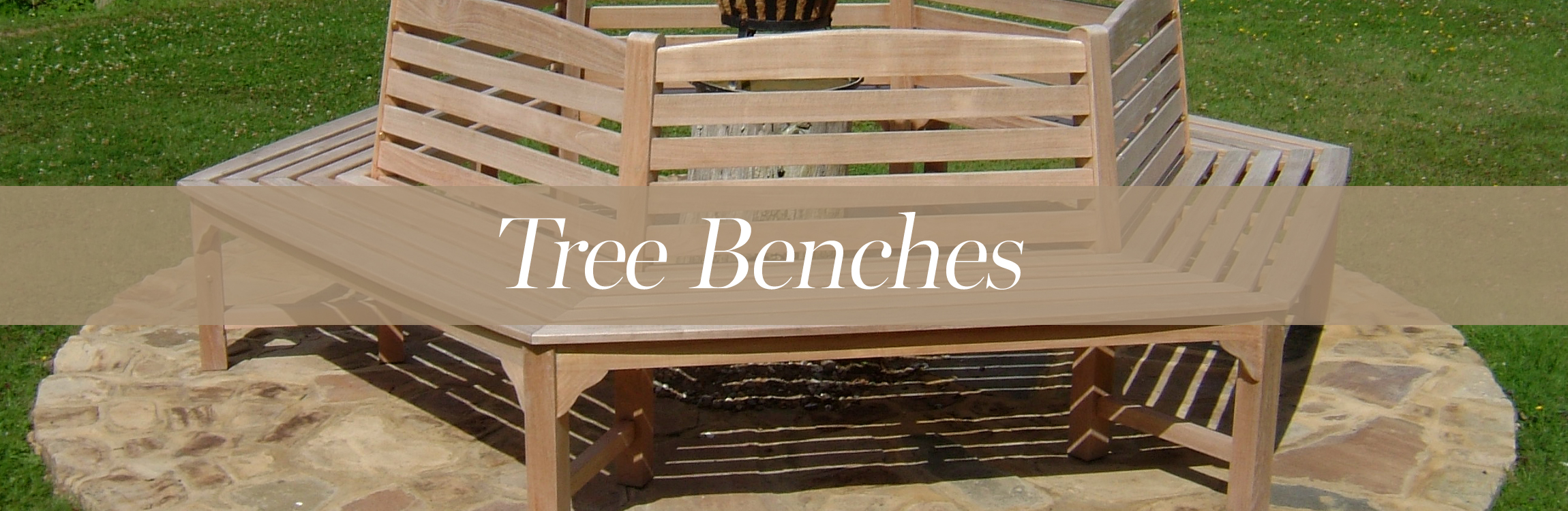 Tree Benches